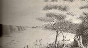 Palm Beach Bible Garden history