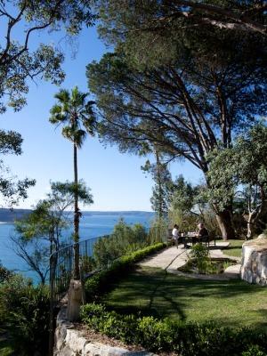 Box hedge n the Palm Beach Bible Garden NSW